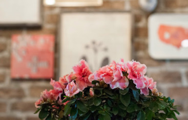 BROOKE-FLOWERS1