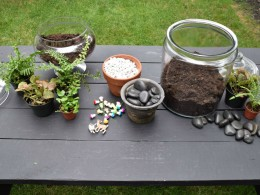 Supplies and how to make a DIY glass terrarium