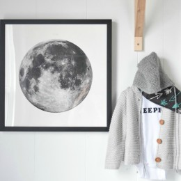 Baby Boy Nursery Features