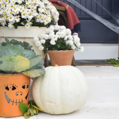 Friday Favorites starts with Halloween Decor That is Tastefully Done and SALES!