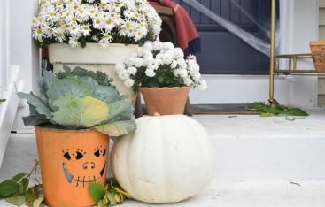 halloween-decorations-and-halloween-food-ideas-2