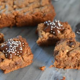 Healthy Almond Butter Brownies and Nut Bars