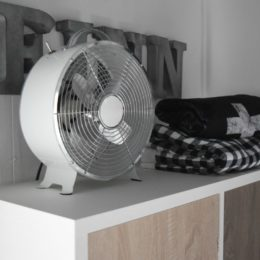 Friday Favorites starts with a Design Question about Fans