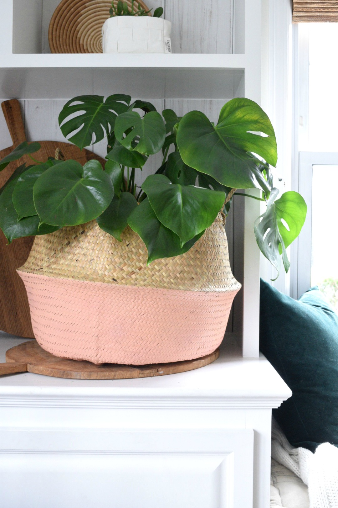 Favorite Home Decor Things- Baskets for Houseplants and Tips!