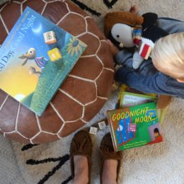 Good Day, Good Night- A Day in The Life of a Blogger with a 19 month Old!