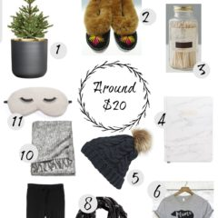Christmas Gift Guide- For HER under $20