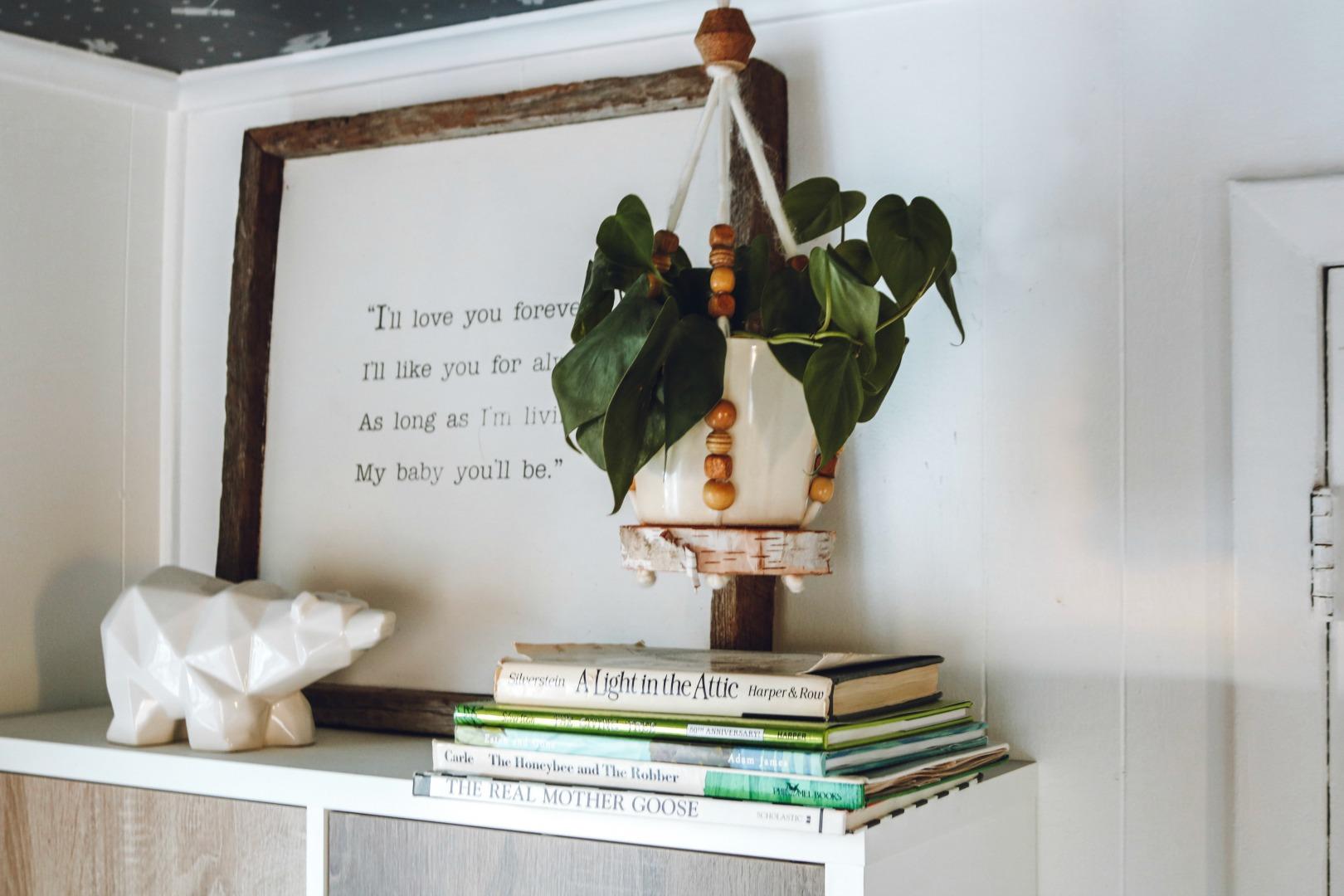 DIY Macrame Plant Holder- Great Gift!