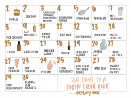 30 Days to a Toxic Free Home