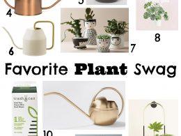 Favorite Plant Swag